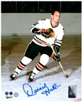 Dennis Hull, Signed 8x10 Unframed Blackhawks